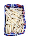 Box of Parsnips. A Display Box of British Parsnips Vegetables Stock Image