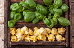 Box of pasta ravioli and basil Royalty Free Stock Photo