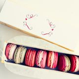 Box of pastel macarons Royalty Free Stock Photos