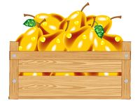 Box with pear Royalty Free Stock Images