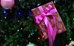 Box of the present displayed in a tree. Box of a present for red displayed in a Christmas tree Royalty Free Stock Photos