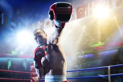 Box professional figters on the ring stock image