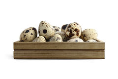 Box with quail eggs Royalty Free Stock Images