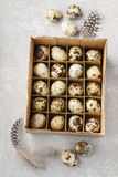 Box of quail eggs. Easter decoration royalty free stock images
