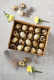 Box of quail eggs Royalty Free Stock Photo