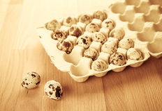 Box with quail eggs Royalty Free Stock Photography