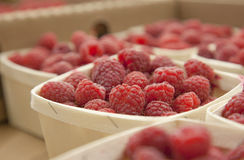 Box of raspberries Royalty Free Stock Images