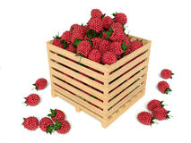 Box of raspberry on white Royalty Free Stock Photo