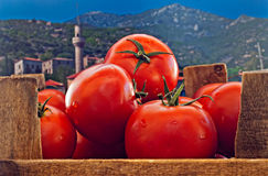 Box of red ripe tomatoes Royalty Free Stock Image
