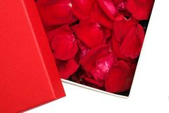 box of red rose petals stock image