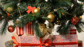 Box with ribbon under cute christmas fir tree stock video