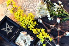Box with runes, pentagram and flowers on green witch table. Wicca, esoteric, divination and occult concept with vintage magic objects for mystic rituals stock photos