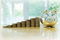 Box saving piggy with coins isolated Stock Image