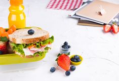 Box with school lunch and a bottle of juice. Cheese and lettuce sandwich, fresh berries for baby food and books. Light background. And space for text. Copy stock images