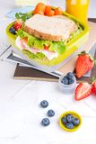 Box with school lunch and a bottle of juice. Cheese and lettuce sandwich, fresh berries for baby food and books. Light background. And space for text. Copy stock photos