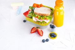 Box with school lunch and a bottle of juice. Sandwich with cheese and salad, fresh berries for baby food. Light background and. Space for text. Copy space royalty free stock photo