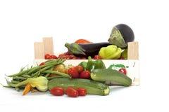 Box of seasonal vegetables mixed Royalty Free Stock Photography