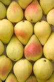 box sorterade pears Fotografering för Bildbyråer