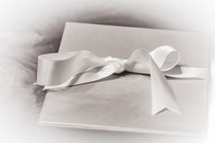 Box of a special present Stock Images