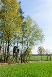Box stand at the edge of a forest. In spring Stock Images