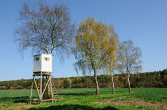 Box stand at a row of birches Royalty Free Stock Photography