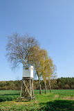 Box stand at a row of birches Stock Images