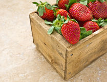 Box of Strawberries Stock Images