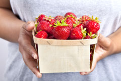 Box of Strawberries Royalty Free Stock Photography