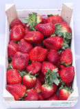 Box of strawberry. Isolated box of fresh strawberries on a box and white background Royalty Free Stock Photography