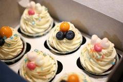 Box of the tasty decorated cupcakes. top view. macro stock photo