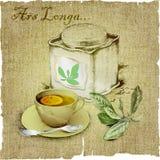 Box of tea, cup of tea, tea leaves,lemon on canvas.vector illustration Stock Photography