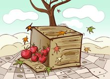 Box and tomatoes. With autumn background vector Stock Photography