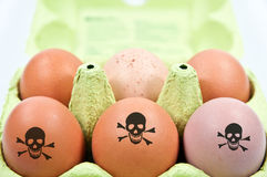 Box with toxic chicken eggs. And warning signs Royalty Free Stock Images