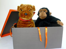 Box with toys. Open gift box with two cuddly toys inside isolated over white Stock Images
