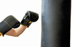 Box training Royalty Free Stock Photo