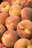 Box of tree ripe peaches Royalty Free Stock Images