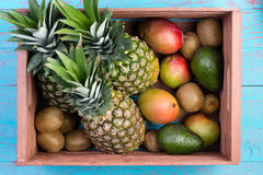 Box of tropical fruits in market crate on market table Stock Image