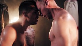 Box. Two male boxers greeting each other stock video