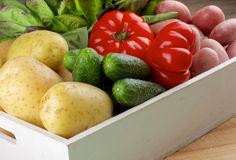 Box with Vegetables. Fresh Raw Potatoes, Cucumbers, Tomatoes and Butterhead Lettuce closeup in White Wooden Box Stock Photo