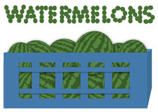 Box of watermelons Royalty Free Stock Photo