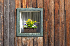 Box window with flower pot Royalty Free Stock Images