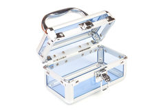 Box for women accessories Stock Photography