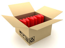 Box and WWW. This is a 3D rendered picture Stock Photography