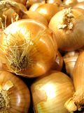 Box of yellow onions Stock Image