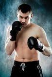 Boxare 免版税库存图片