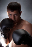 boxare Royaltyfria Foton
