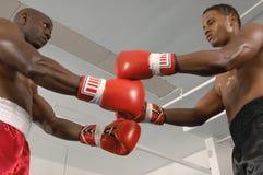 Boxare för starten av en match Arkivfoton