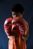 boxare little Fotografering för Bildbyråer