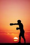 Boxare på solnedgången Royaltyfri Fotografi