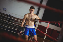 Boxare som skriver in i boxningsring Arkivbild